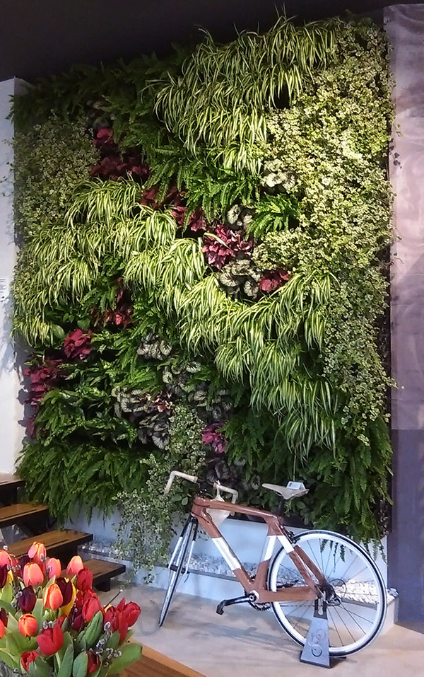 Superieur Our Vertical Garden Enable Rapid Installation With Instantaneous  Gratification. Maintenance Is Minimal And When Required Easy To Access  Areas Of The System.