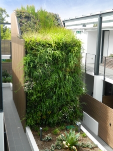 Atlantis Aurora Has A Team Of Professionals That Provide Green Roof Design,  Installation And Maintenance Services. Green Roof Habitats Have Significant  ...