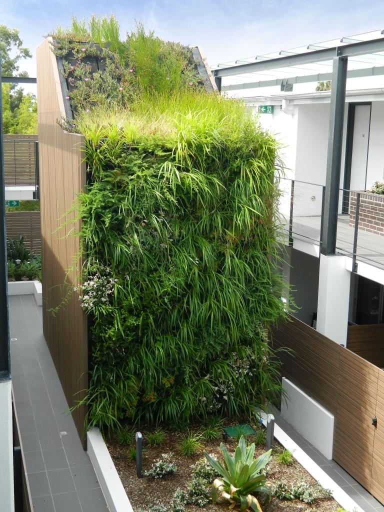 Corridor Roof Design: Roof Garden Design & Installation