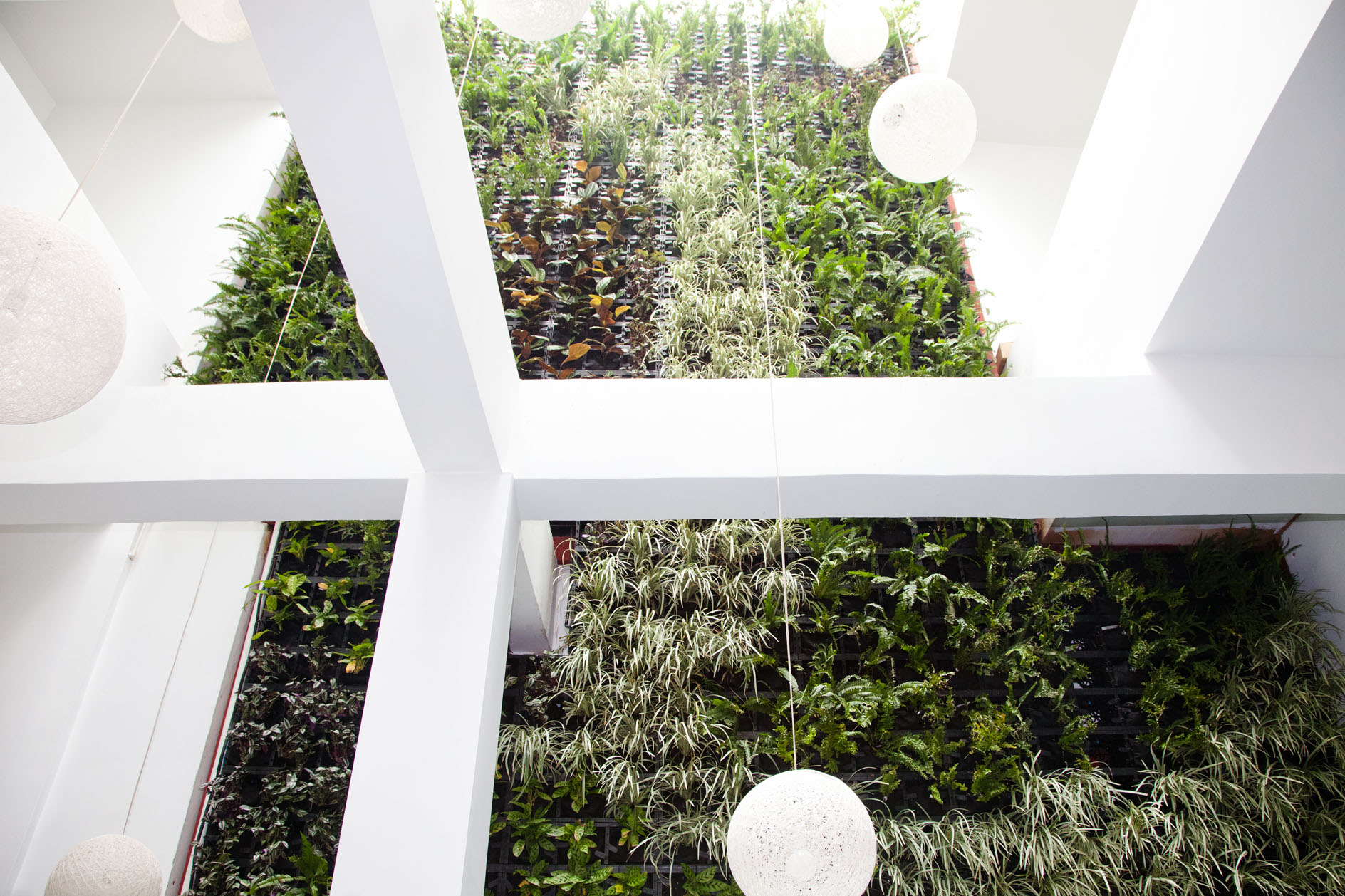 Hotel Lobby In Panama Gets Green Wall