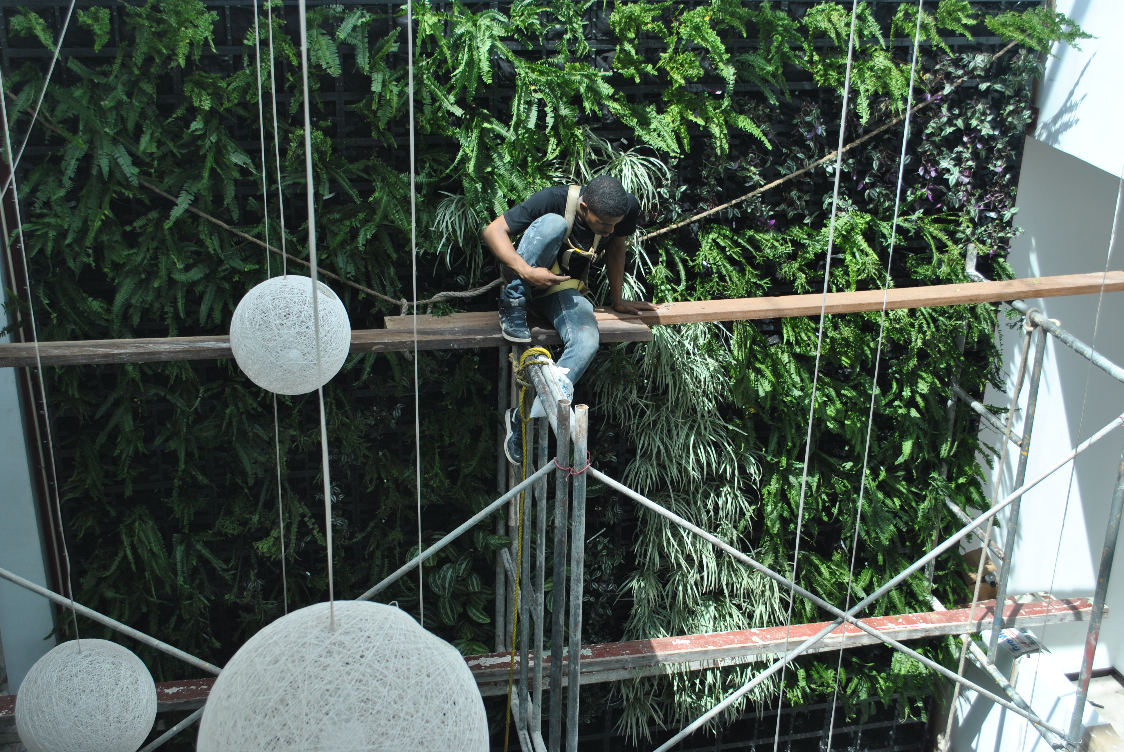 Installation of Hotel Lobby Green Wall in Panama, Atlantis Gro-Wall® Vertical Garden System