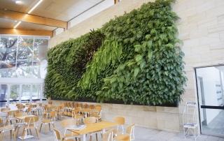Vertical Garden Green Wall Atlantis